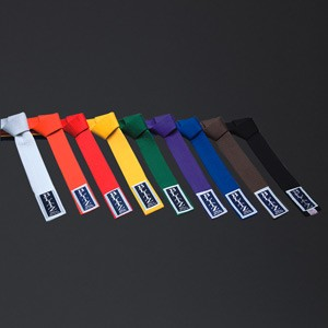 http://www.budostore.cz/1444-thickbox/blitz-sport-plain-coloured-belt.jpg