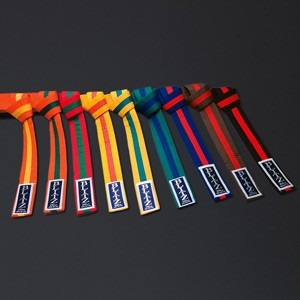http://www.budostore.cz/186-thickbox/blitz-sport-colour-belt-colour-stripe.jpg